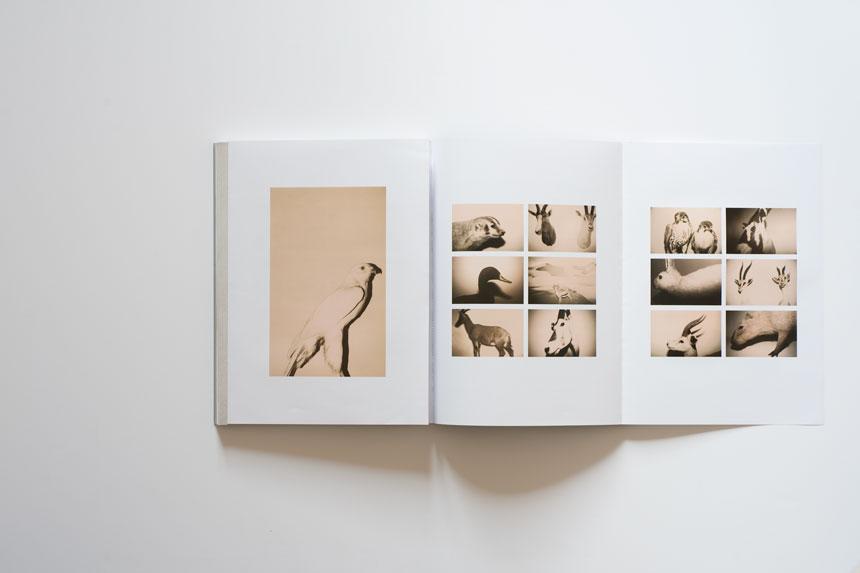 Andrea Ferrari, News, Book, Libri, Artist, Photographer, Fotografo